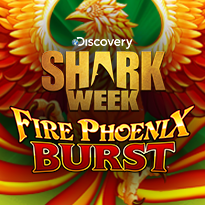 Fire Pheonix Burst video slot game